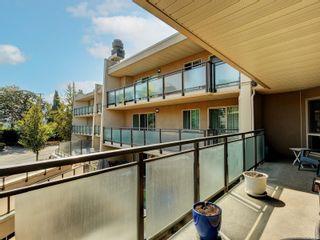 Photo 20:  in : Vi Fernwood Condo for sale (Victoria)  : MLS®# 883981