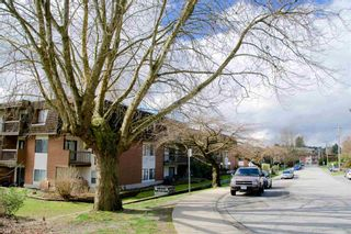 Photo 1: 313 33870 FERN Street in Abbotsford: Central Abbotsford Condo for sale : MLS®# R2599642