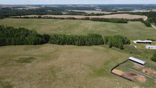 Photo 14: 51060 RGE RD 33: Rural Leduc County House for sale : MLS®# E4247017