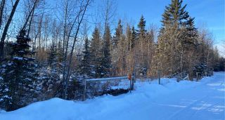 Photo 2: TWP 532 RR 274: Rural Parkland County Rural Land/Vacant Lot for sale : MLS®# E4223363