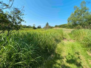 Photo 19: Shore Road in Merigomish: 108-Rural Pictou County Vacant Land for sale (Northern Region)  : MLS®# 202120405