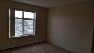 Photo 16: 437 6076 SCHONSEE Way in Edmonton: Zone 28 Condo for sale : MLS®# E4262572