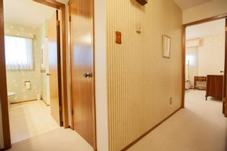 Photo 28: 4111 107A Street in Edmonton: Zone 16 House for sale : MLS®# E4249921