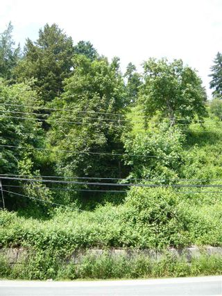 Photo 5: 47165 YALE Road in Chilliwack: Chilliwack E Young-Yale Land for sale : MLS®# R2459551
