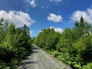Photo 2: Lot 19 Highway 7 in Goldenville: 303-Guysborough County Vacant Land for sale (Highland Region)  : MLS®# 202100399