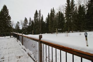 Photo 33: 371009 Range Road 5-3: Rural Clearwater County Detached for sale : MLS®# A1062405