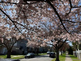 """Photo 15: 180 W 63RD Avenue in Vancouver: Marpole Townhouse for sale in """"CHURCHILL"""" (Vancouver West)  : MLS®# R2536694"""