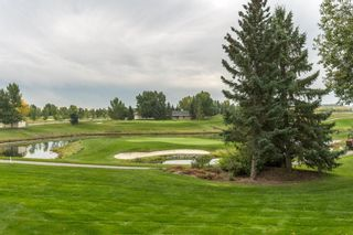 Photo 33: 40 Summit Pointe Drive: Heritage Pointe Detached for sale : MLS®# A1082102