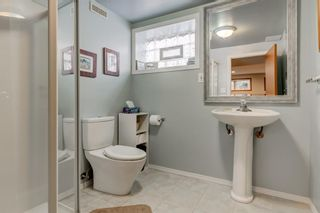 Photo 19: 2108 51 Avenue SW in Calgary: North Glenmore Park Detached for sale : MLS®# A1058307