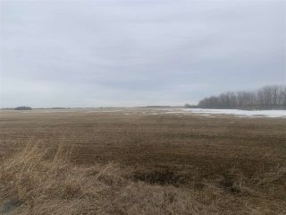 Photo 3: Rg. Rd. 252 Twp. 564: Rural Sturgeon County Rural Land/Vacant Lot for sale : MLS®# E4235322