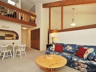 Photo 3: 407 1009 McKenzie Ave in VICTORIA: SE Quadra Condo for sale (Saanich East)  : MLS®# 639350
