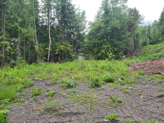 Photo 22: 1395 Taylor Road, in Sorrento: Vacant Land for sale : MLS®# 10229703