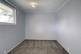 Photo 24: 132 Mardale Crescent NE in Calgary: Marlborough Detached for sale : MLS®# A1146772
