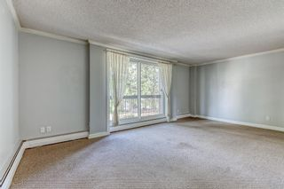 Photo 15: 309 315 HERITAGE Drive SE in Calgary: Acadia Apartment for sale : MLS®# A1029612