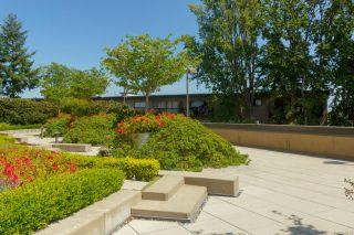Photo 38: 105 103 E Gorge Rd in : Vi Burnside Condo for sale (Victoria)  : MLS®# 869015