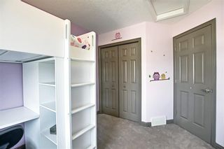 Photo 30: 2091 Sagewood Rise SW: Airdrie Detached for sale : MLS®# A1121992