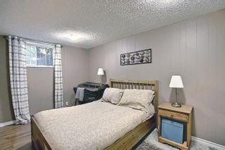 Photo 30: 10933 150 Street in Edmonton: Zone 21 House for sale : MLS®# E4251858