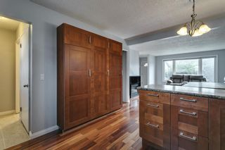 Photo 11: 4763 Rundlewood Drive NE in Calgary: Rundle Detached for sale : MLS®# A1107417