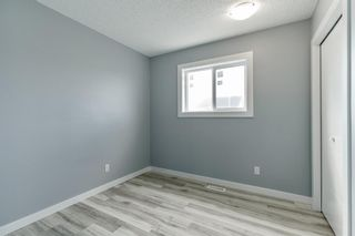 Photo 19: 23 Erin Meadows Court SE in Calgary: Erin Woods Detached for sale : MLS®# A1146245