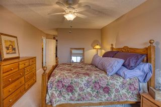 Photo 14: 402 7725 108 Street in Edmonton: Zone 15 Condo for sale : MLS®# E4234939