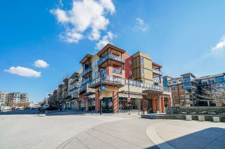 Photo 1: 303 20728 WILLOUGHBY TOWN CENTRE DRIVE in Langley: Willoughby Heights Condo for sale : MLS®# R2443389
