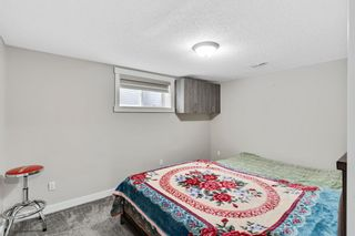 Photo 33: 228 Covemeadow Court NE in Calgary: Coventry Hills Detached for sale : MLS®# A1118644