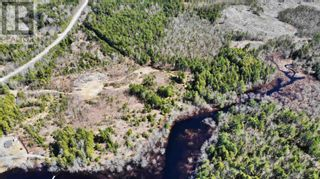 Photo 3: acreage 930 Road in Buckfield: Vacant Land for sale : MLS®# 202108244
