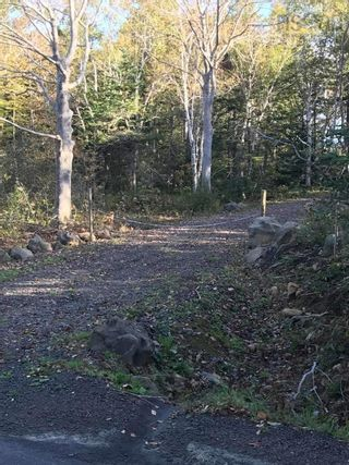 Photo 8: Lot Culloden Road in Culloden: 401-Digby County Vacant Land for sale (Annapolis Valley)  : MLS®# 202125188