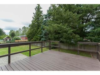 Photo 13: 26649 32A AVENUE in Langley: Aldergrove Langley House for sale : MLS®# R2082354