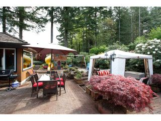 Photo 3: 23848 58A AV in Langley: Salmon River House for sale : MLS®# F1444614