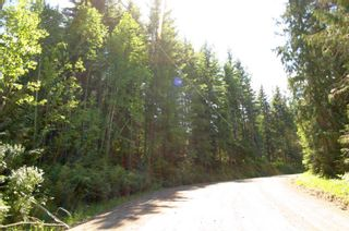 Photo 41: 4827 Goodwin Road in Eagle Bay: Vacant Land for sale : MLS®# 10116745