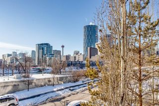 Photo 18: 202 414 MEREDITH Road NE in Calgary: Crescent Heights Apartment for sale : MLS®# A1056974