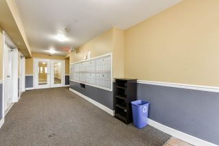 """Photo 6: 207 10186 155 Street in Surrey: Guildford Condo for sale in """"The Sommerset"""" (North Surrey)  : MLS®# R2544813"""