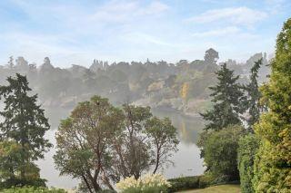 Photo 7: 407 105 E Gorge Rd in : Vi Burnside Condo for sale (Victoria)  : MLS®# 855927