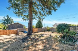 Photo 29: 111 Thulin St in Campbell River: CR Campbell River Central House for sale : MLS®# 884273