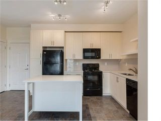 Photo 41: #3413 755 COPPERPOND BV SE in Calgary: Copperfield Condo for sale : MLS®# C4086900