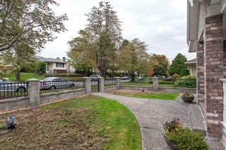 Photo 16: 180 W 62ND AVENUE in Vancouver: Marpole House for sale (Vancouver West)  : MLS®# R2009179