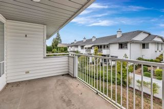 """Photo 38: 25 3055 TRAFALGAR Street in Abbotsford: Central Abbotsford Townhouse for sale in """"Glenview Meadows"""" : MLS®# R2611472"""
