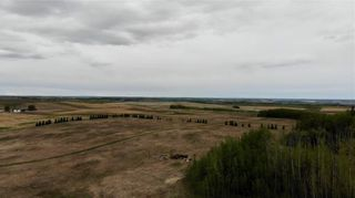 Photo 7: Viewmar Drive: Rural Ponoka County Land for sale : MLS®# C4288523