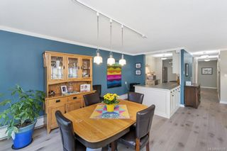 Photo 27: 203 2920 Cook St in Victoria: Vi Mayfair Condo for sale : MLS®# 842108