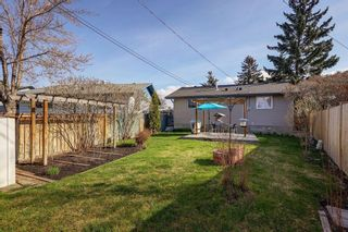 Photo 25: 4115 DOVERBROOK Road SE in Calgary: Dover Detached for sale : MLS®# C4295946