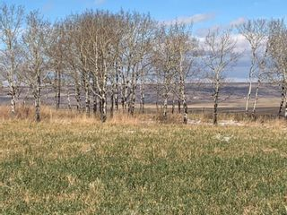 Photo 18: 43062 TOWNSHIP ROAD 250 in Rural Rocky View County: Rural Rocky View MD Land for sale : MLS®# A1042976