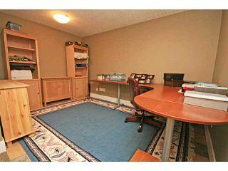 Photo 18: 476 LAKE TOPAZ Crescent SE in CALGARY: Lake Bonavista Residential Detached Single Family for sale (Calgary)  : MLS®# C3577762