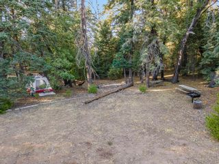 Photo 10: PALOMAR MTN House for sale : 7 bedrooms : 33350 Upper Meadow Rd in Palomar Mountain