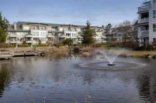 """Photo 17: 216 5700 ANDREWS Road in Richmond: Steveston South Condo for sale in """"RIVERS REACH"""" : MLS®# R2543939"""