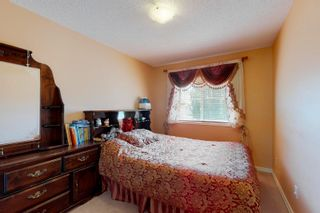 Photo 25: 20820 55 Avenue in Edmonton: Zone 58 House for sale : MLS®# E4251212