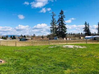 Photo 7: 6878 267 Street in Langley: County Line Glen Valley House for sale : MLS®# R2597377