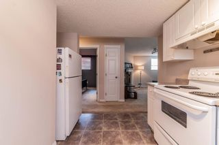 Photo 38: 1 ERINWOODS Place: St. Albert House for sale : MLS®# E4254213