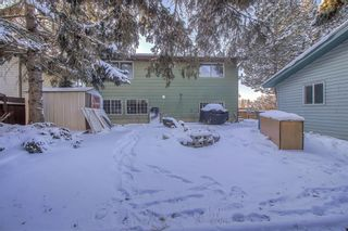 Photo 28: 4 Abergale Way NE in Calgary: Abbeydale Detached for sale : MLS®# A1068236