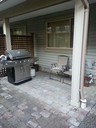 """Photo 17: 22 5388 201A Street in Langley: Langley City Townhouse for sale in """"THE COURTYARDS"""" : MLS®# R2064811"""
